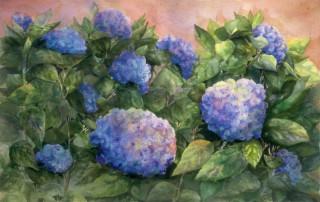 Blue Hydrandeas - Janet Payne