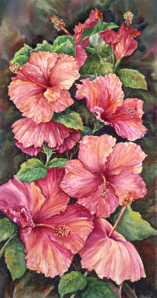 Pink Hybiscus - Janet Payne