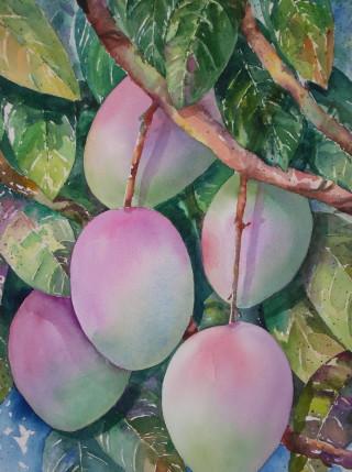 Mangos-Janet Payne