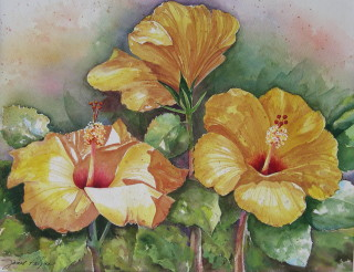 three yellow hibiscus-janet payne.jpg