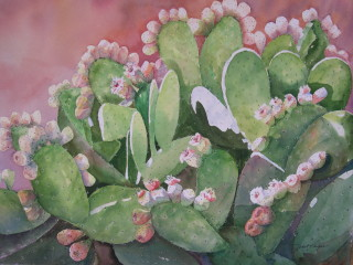 Bloom'in Cactus-Janet Payne.jpg
